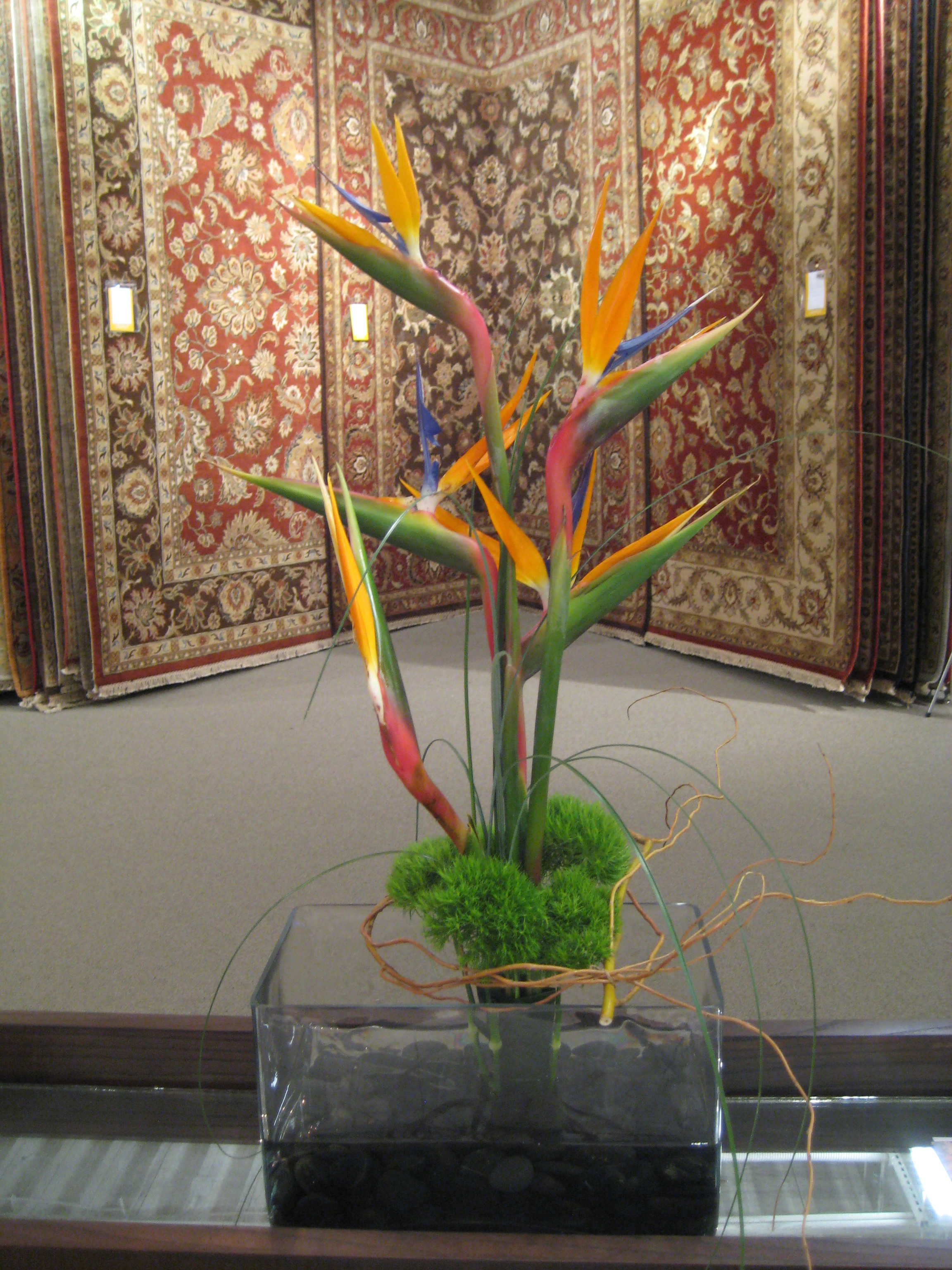 Modern and Contempory Floral Designs